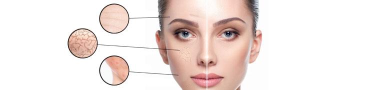 ENOCERIDE complément alimentaire antioxydant et beauté de la peau